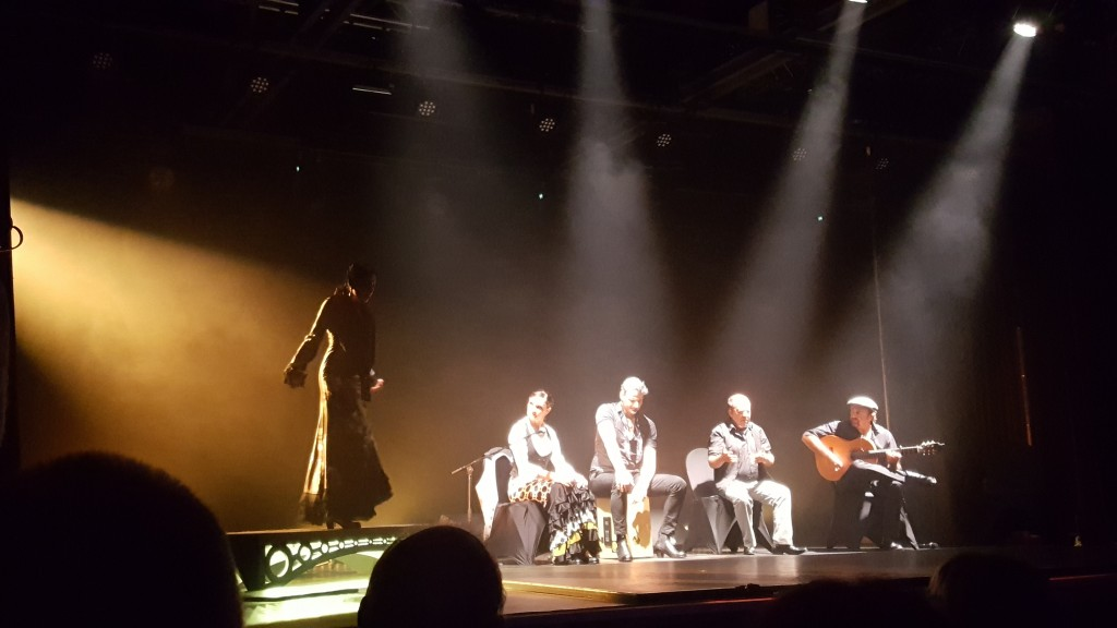 Pia flamenco