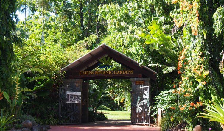 Cairns Botanic Gardens Seen Through The Lens Of My Camera